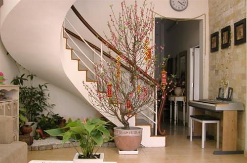 Trong bố cục ngôi nhà, phòng khách có vị trí quan trọng nhất. Phòng khách cũng là không gian đáng quan tâm nhất trong những ngày lễ Tết.